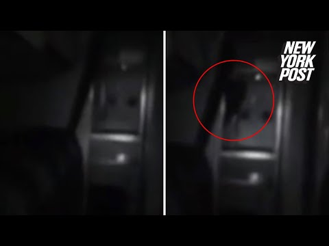 Convincing footage shows 'ghost' on an airplane
