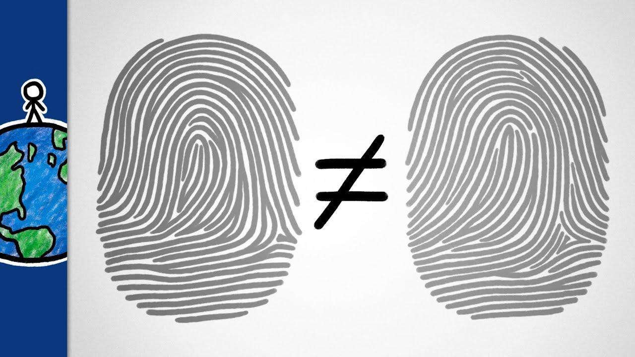 Why Are Your Fingerprints Unique?
