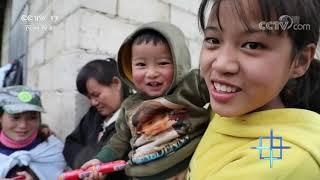 《中国三农报道》 20201114 CCTV农业 - YouTube