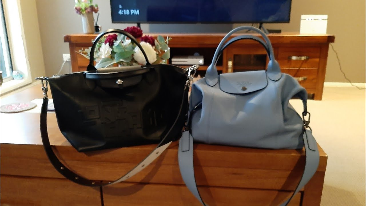 Longchamp Cuir Small and Medium Comparison (Part 2) What's in my bag/ What  fits in my Longchamp
