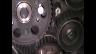 Correia de distribuição - Timing Belt - Opel Montery - isuzu trooper 3.1 .