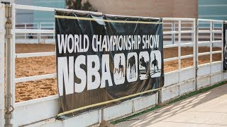Nsba World Show - Monday, 8/13 Ford Truck Arena 8:00 Am