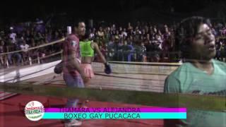 BOXEO GAY THAMARA VS ALEJANDRA