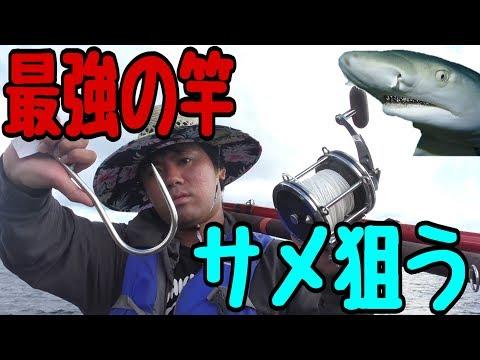 最強の釣り竿でサメを捕獲する