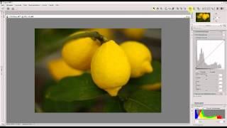 Nikon Capture NX 2 - Upoint
