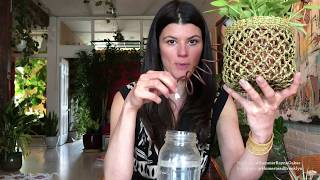 Ep 016: Cool Watering Hacks for Houseplants - Plant One On Me