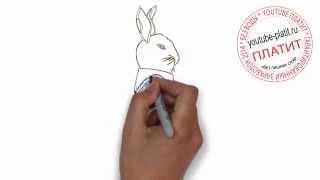Как поэтапно карандашом нарисовать зайца строителя(Как нарисовать картинку поэтапно карандашом за короткий промежуток времени. Видео рассказывает о том,..., 2014-07-14T05:45:17.000Z)