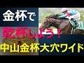 2018中山金杯~今年飛躍するセダブリランテスが新春競馬を飾る~【競馬予想】