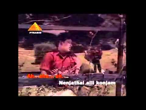 Nenjathai aLLi konjam thaa  Karaoke for Male Singers by Hams