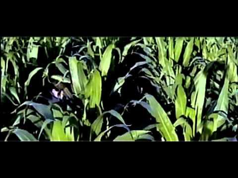 Farm Life's A Killer (aka FLAK) (2002)