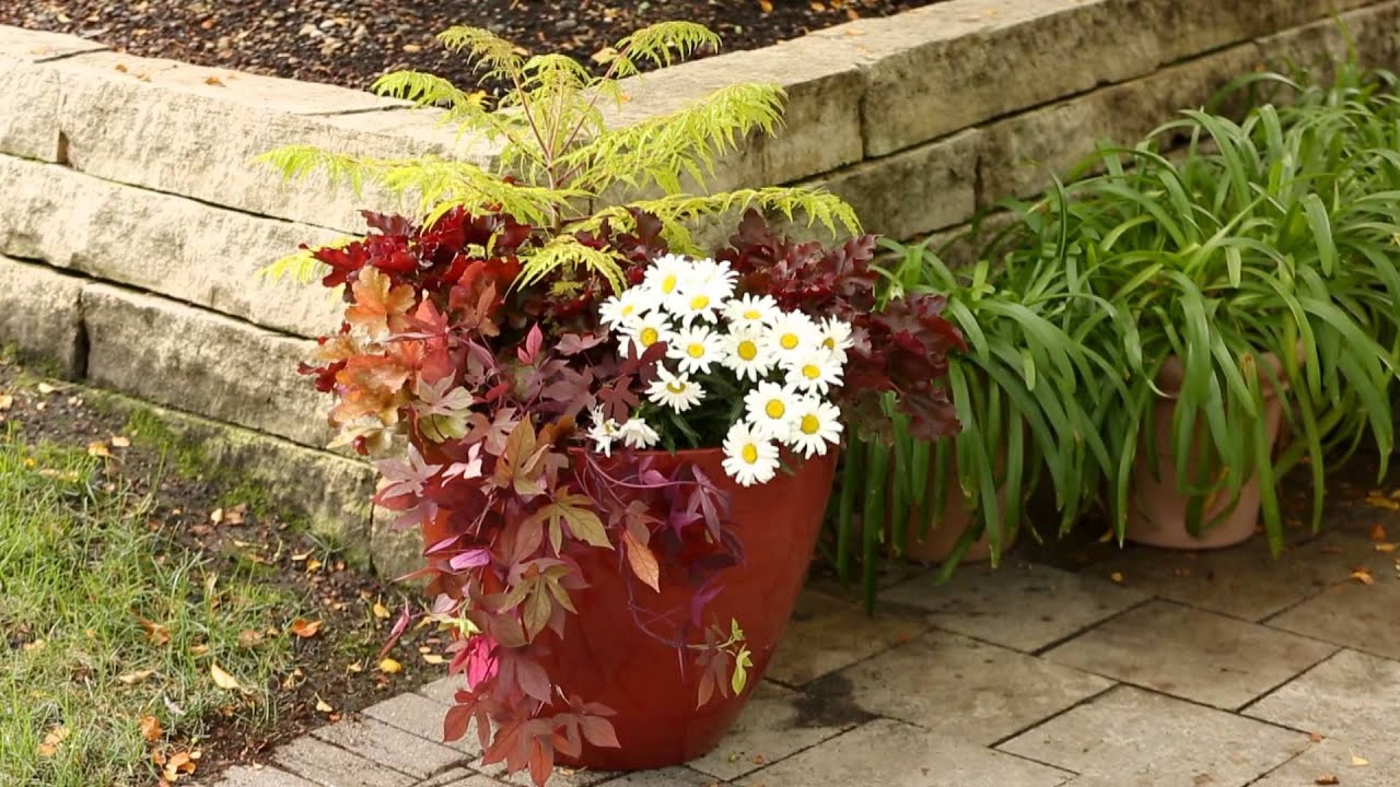 Tips to Save Money in the Yard and Garden - YouTube