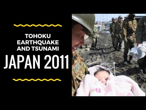 Tohoku Earthquake and Tsunami Japan 2011 - Case Study