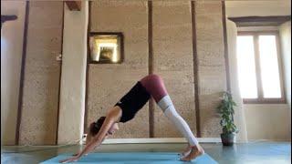 Cours de yoga Vinyasa débutants avec Gwendoline