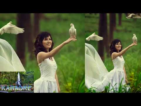 amar-hridoyo-pinjirar-posha-pakhi-re-karaoke-_-bangla-karaoke-with-lyrics-♪---cover-song