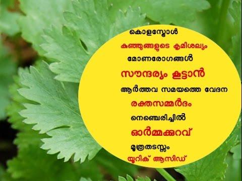 എല്ലാ പ്രയാസങ്ങൾക്കും ഒരൊറ്റമൂലി  Ayurvedic Home Remedy