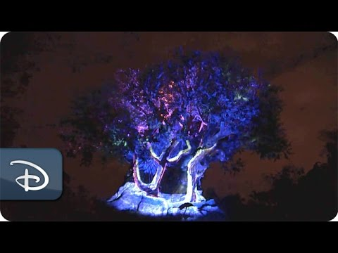 New Nighttime Magic at the Tree of Life | Disney's Animal Kingdom
