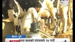 दुग्ध व्यवसायातून साधली प्रगती  | Rohidas Kalkutte dairy farming success story