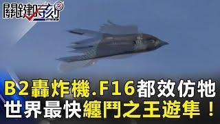 美國B2轟炸機、F16都是效仿牠!世界上速度最快纏鬥之王「遊隼」!關鍵時刻 20180613-2黃世聰