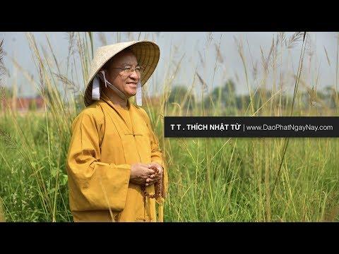 Biểu tượng đản sinh và sự ra đời của đức Phật