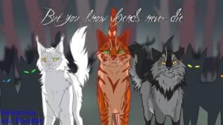 Коты Воители - Бич и Огнезвезд.(Scourge and Firestar) - Заказ с канала Ночной клык Волк воитель