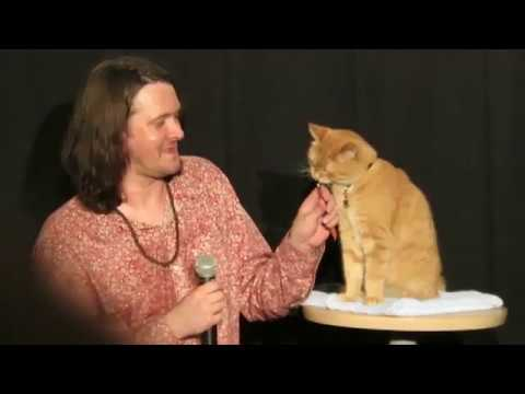 A Street Cat Named Bob Japan premier - James Bowen Interview ボブという名の猫・幸せのハイタッチ ジャパンプレミア