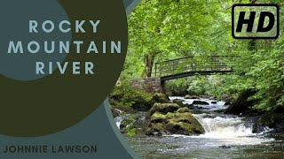 1 Hour Nature Sounds-Relax-Birds Singing-Vogelgesang-le chant des oiseaux-Bird Song