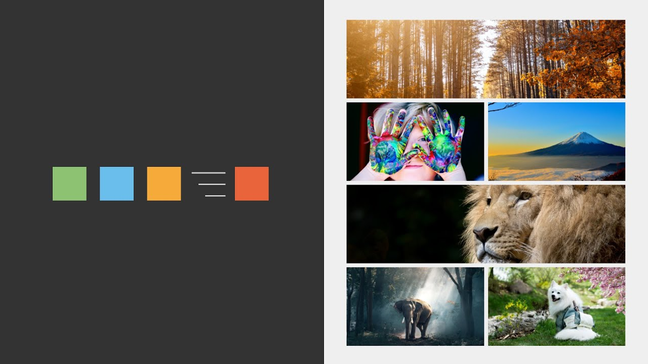 How to Create a Loading Animation for Website (Vue.js)
