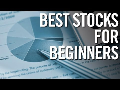 BEST STOCKS FOR BEGINNERS IN 2017 📈 Stock Market For Beginne