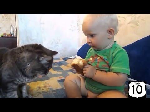 Смешные дети, кошки, собаки и не только! Подборка приколов #2 - Ржачные видео приколы