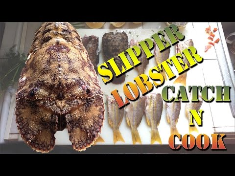 Hawaiian Catch And Cook - Fresh Catch Slipper Lobster and Invasive Snapper Cook Out - B.O.D.S. 27