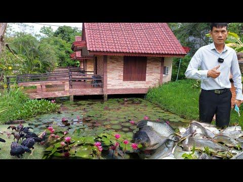 บ้านกลางน้ำสวยๆกับเกษตรผสมผสาน!!ชีวิตในฝันตอนบั้นปลาย..อยากได้แบบนี้