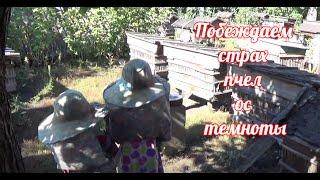 ПАПА УЧИТ ДЕТЕЙ НЕ БОЯТЬСЯ ПЧЕЛ, ОС И ТЕМНОТЫ - childe fear of bees(Продолжаю монтировать видео с нашей поездки в село к бабушке и дедушке этой осенью. Для детей там очень..., 2015-09-26T12:09:35.000Z)