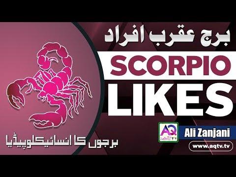 Gemini & Scorpio: Love Compatibility from YouTube · Duration:  28 minutes 34 seconds