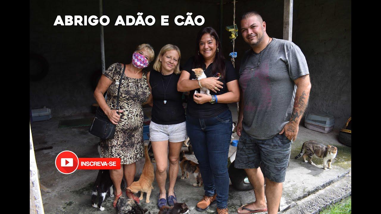Abrigo Adão e Cão #Catiabahia #Moradadobem #abrigodeanimais