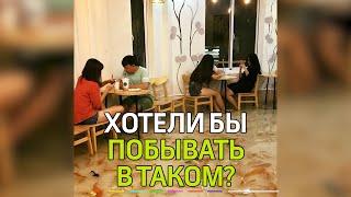 Во Вьетнаме создали кафе, в котором прямо в ногах у посетителей плавают...сотни рыб!