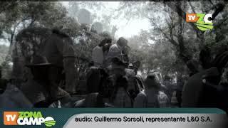Remate de Lartirigoyen & Oromi S.A. en Recalde