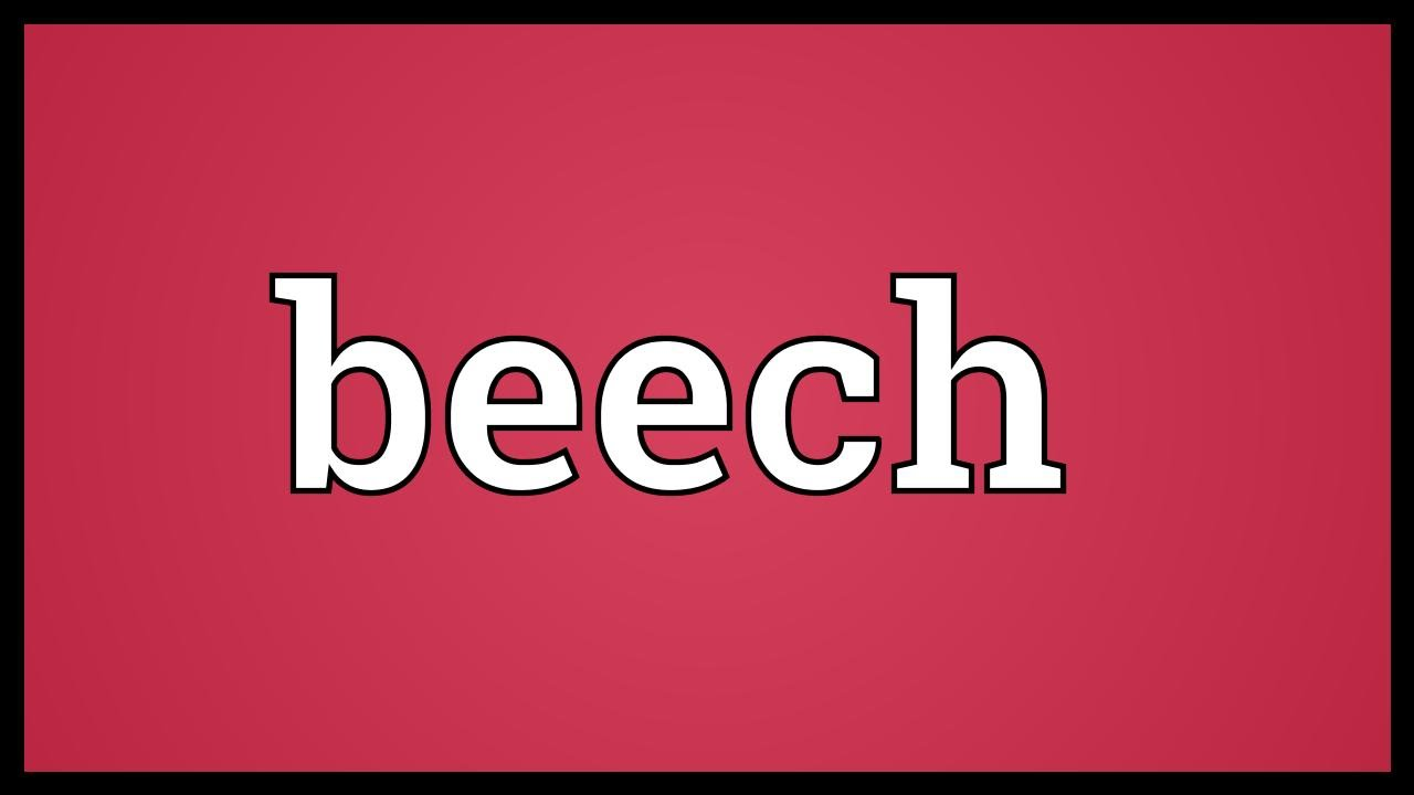Beech is who the meaning, origin, synonyms and interpretation 66