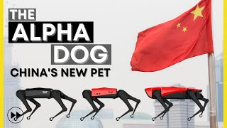 AlphaDog, the new Chinese A.I. companion