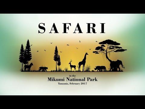 Микуми парк лучшее место для бюджетного сафари - фото