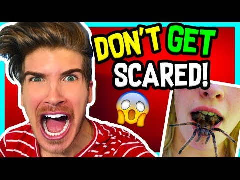 TRY NOT TO GET SCARED CHALLENGE!