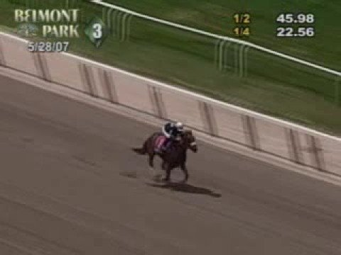 Horse racing oddity: jockey misjudges distance