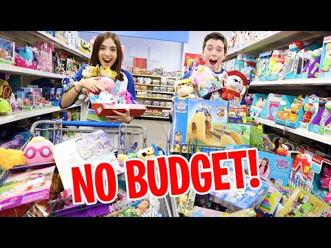 NO BUDGET AT THE TOY STORE