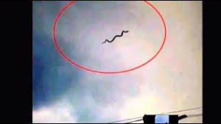 الثعبان الطائر- لن تصدق يستحق المشاهدة---  YouTube
