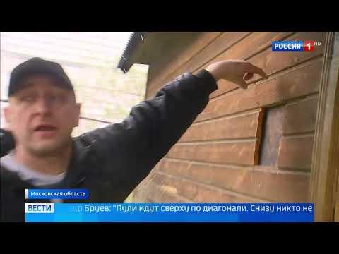 СНТ в Ногинском районе превратилось в зону боевых действий - Россия Сегодня