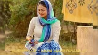 Laung Laachi Song I Ve tu laung ve main laachi Tere piche I Neeru Bajwa I Ammy Virk - Punjabi
