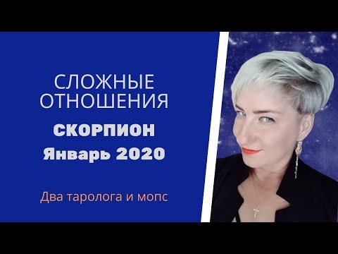 Скорпионы. Сложные отношения. Январь 2020 г.