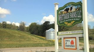 NY Road Trip: Family Farm Exemplifies New York Dairy Production