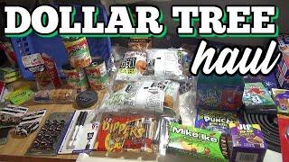 Quick Dollar Tree Haul | Back to School & More