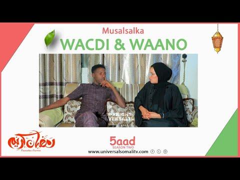 Musalsalka Wacdi & Waano 2021-Q5aad