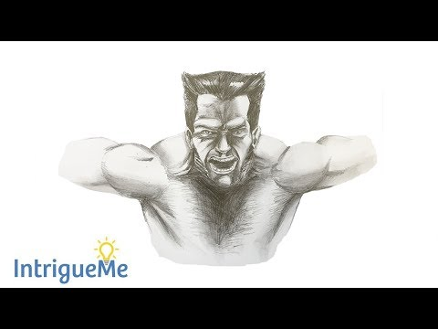 How to Draw Wolverine (Tutorial & Time Lapse Sketch) thumbnail